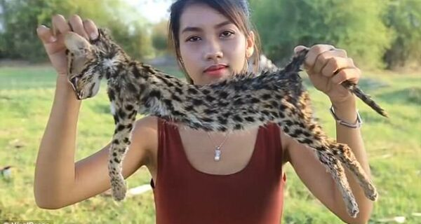 «Подписывайся на канал! Жми на колокольчик!»: камбоджийка поедала редких животных на камеру ради заработка на YouTube