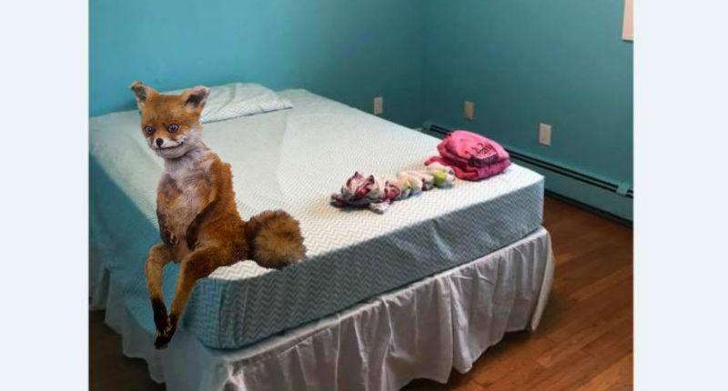 «Добро пожаловать в колонию для несовершеннолетних»: мать превратила комнату дочери в тюрьму