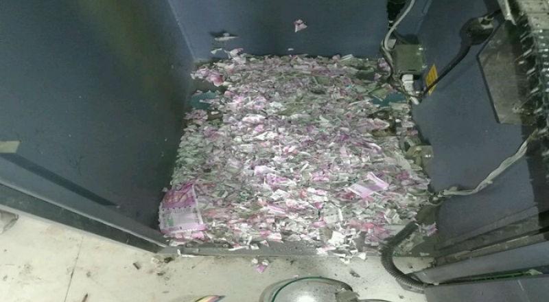 Обед на миллион: мыши залезли в банкомат и съели там все деньги