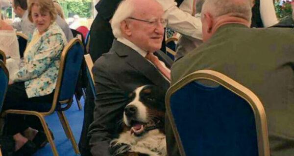 16 причин, почему президент Ирландии Майкл Хиггинс — лучший президент вмире