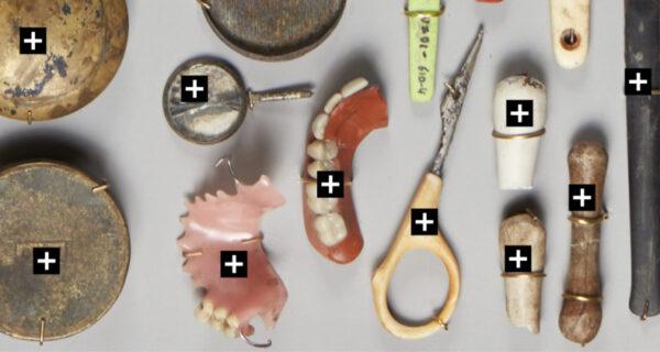 Вставные зубы, советские значки и огнестрел: 700 тысяч находок со дна каналов в Амстердаме