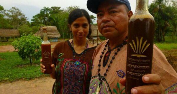 Коварная бутылка: россиянин получил 11,5 лет тюрьмы за шаманский отвар изПеру