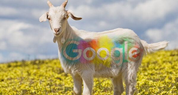 Google 20 лет! И вот 20+ интересных фактов о компании, которые вы точно незнали