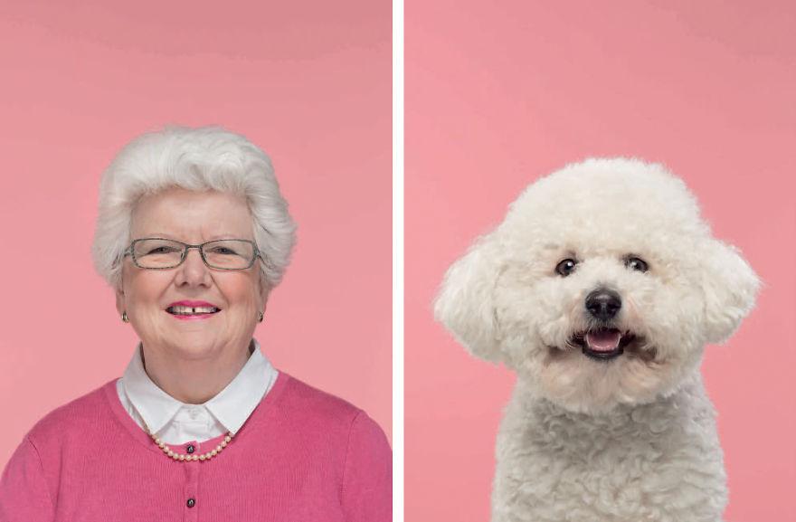 Эти собаки очень похожи на своих хозяев. Фото