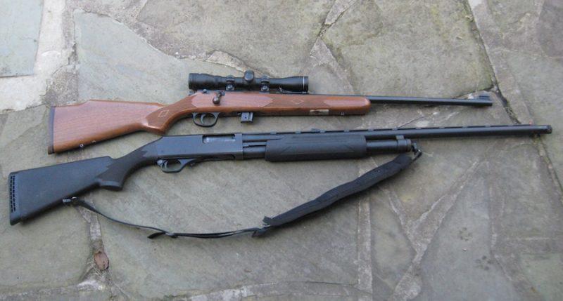 Оружие для охоты на зайца