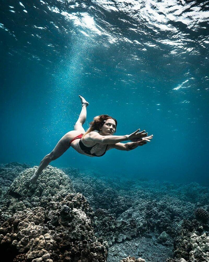 необычные подводные фотографии комплекс под