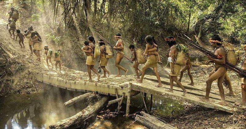 Необычные рисунки на земле в бразильских джунглях
