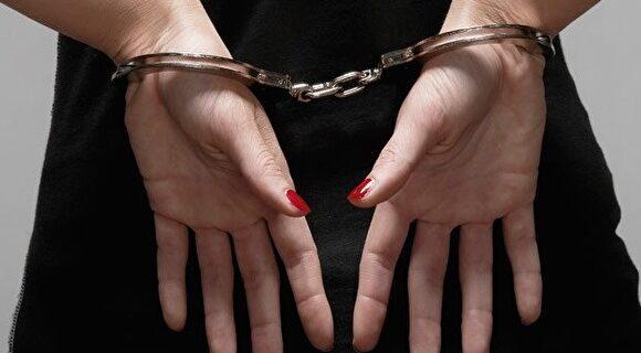 В тюрьму — за комментарий: мать арестовали на глазах ее детей за то, что она назвала трансгендера-женщину «мужчиной»