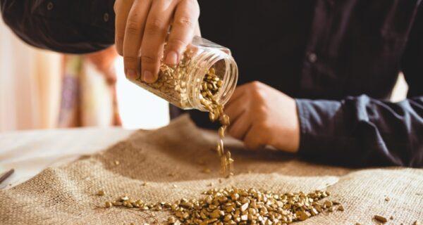 Эхо «золотой лихорадки»: в Новой Зеландии предлагают купить золотоносный участок