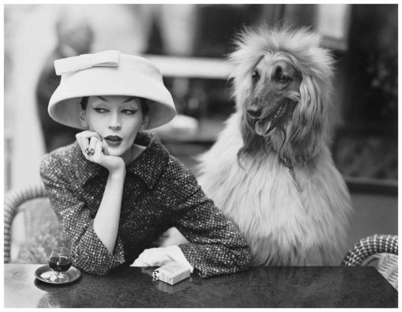 Ричард Аведон — виртуоз фотопортрета, которому доверяли звезды знаменитости,звезды,известные люди,Знаменитости