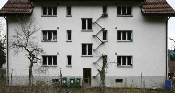 Дорога в кошачье королевство: лестницы для пушистых домашних любимцев на фасадах швейцарских домов