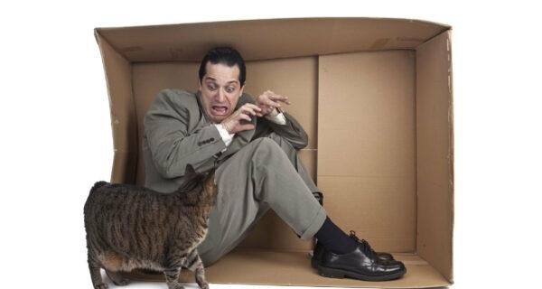 «Испытание котиками»: друзья устроили мужчине с айлурофобией самую милуюпытку