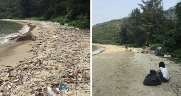 В сети набирает популярность флешмоб #Trashtag: люди убирают мусор и выкладывают фото «до/после»