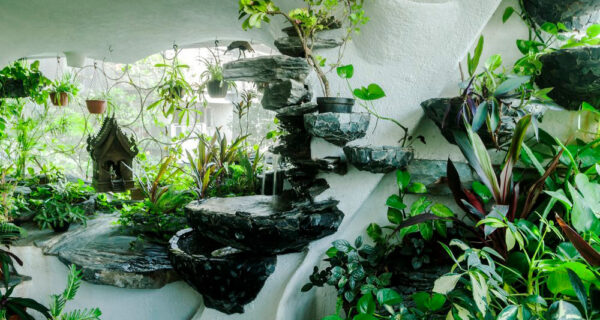 Райский уголок в мегаполисе: растения вдохнули жизнь в однокомнатную квартиру