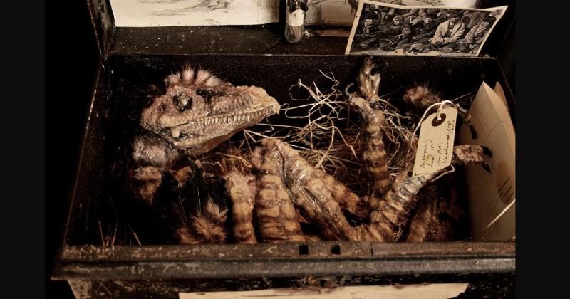 Загадка кошмарной коллекции Томаса Меррилина, путешественника во времени зверушки,живность,питомцы,Животные