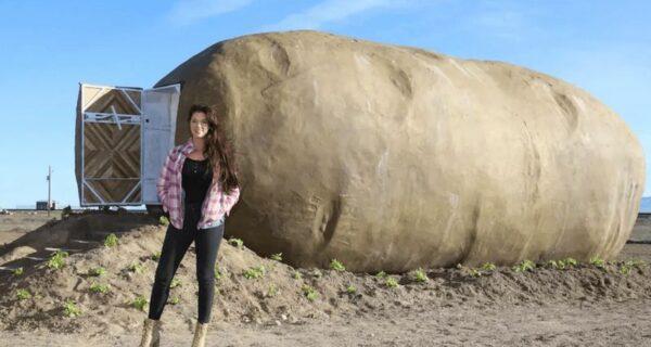 Гигантская «картофелина», которую превратили в мини-гостиницу