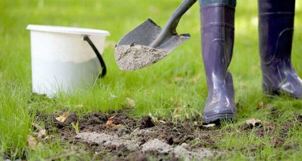 Человеческий компост: американцами разрешат удобрять поля и огороды