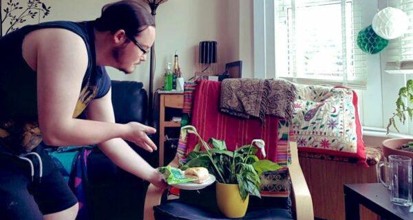 Выпивал с цветами и читал им книги: заботливый сосед поухаживал за комнатными растениями
