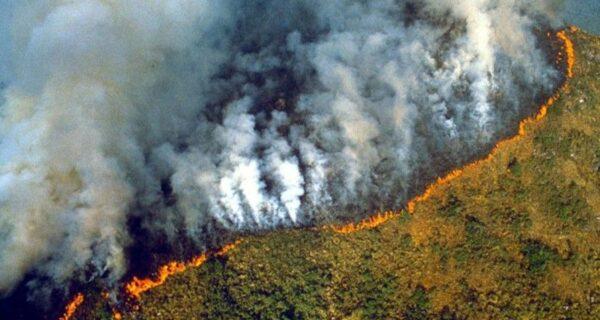 Пепельный дождь и затмение: Бразилия утопает в дыму из-за пожаров в лесах Амазонии