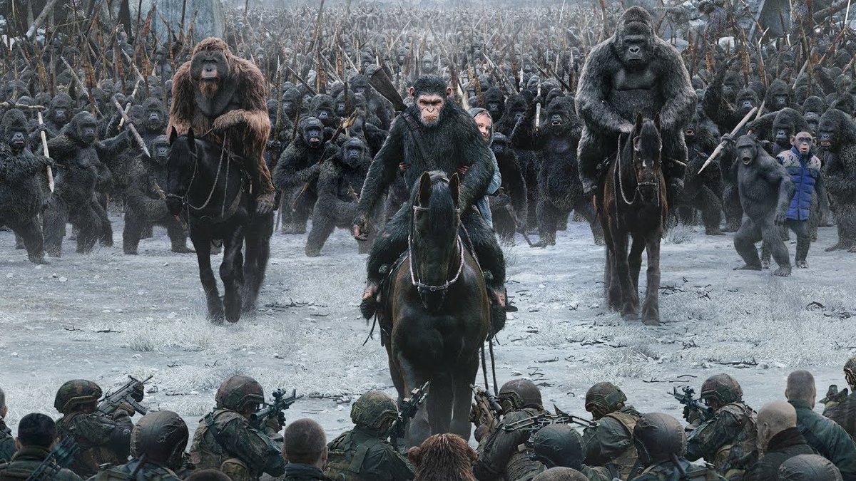 Все как у людей: как два клана шимпанзе устроили 4-летнюю кровавую войну