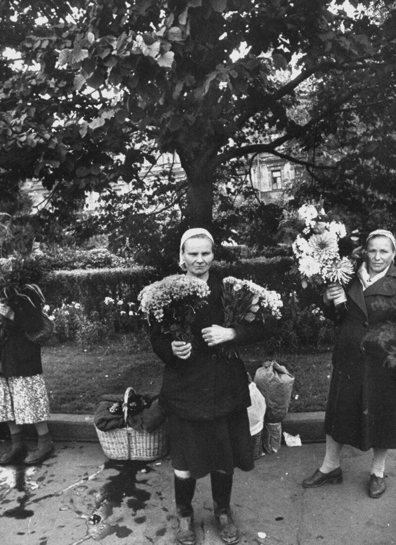 LisaLarsen16 - Простые москвички 1950-х глазами американки