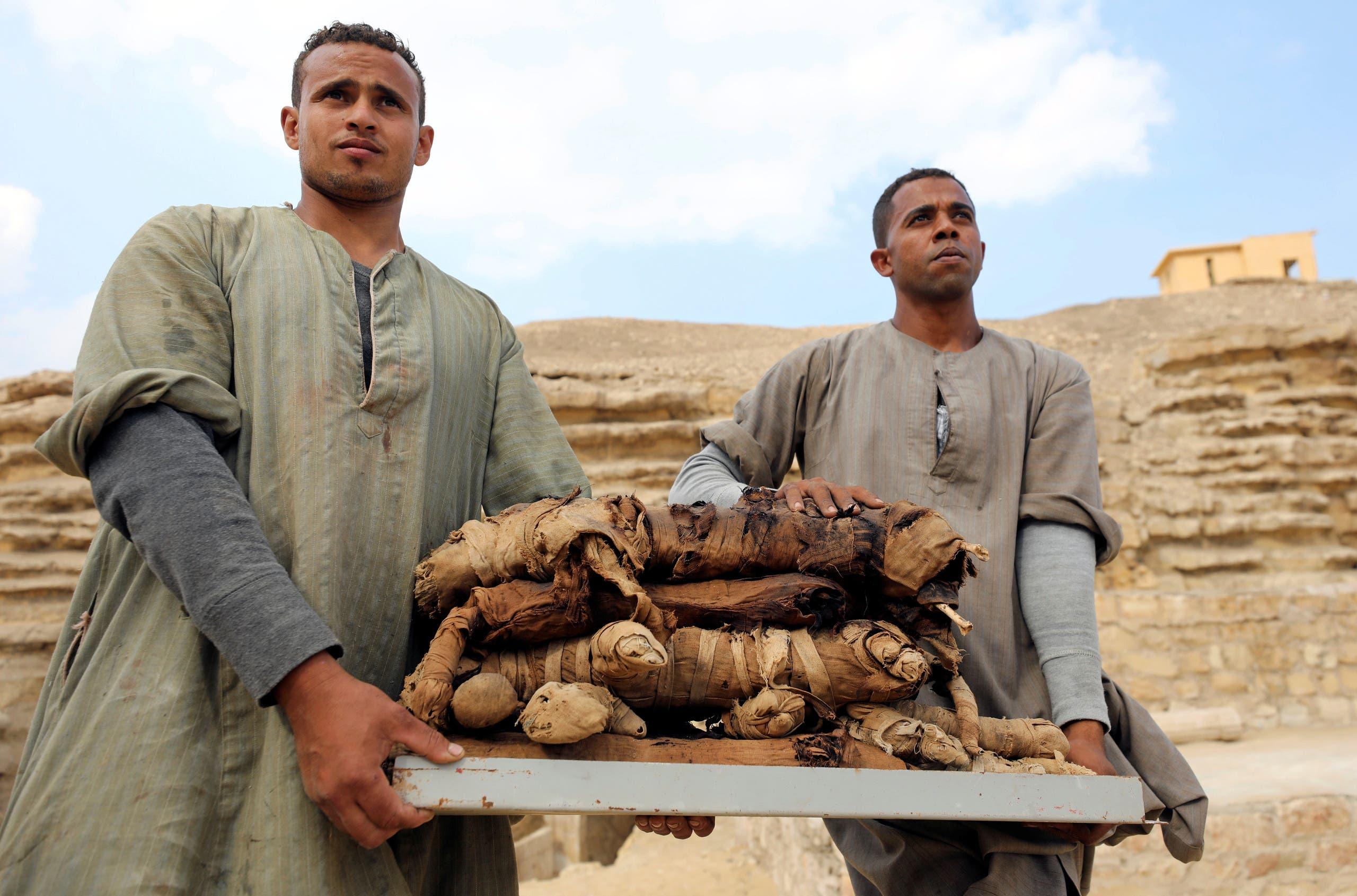 Зачем во времена Средневековья европейцы ели египетские мумии