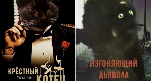 Властелин лотков наносит последний кусь! Постеры кинохитов с котами в главных ролях