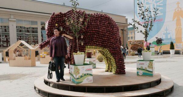 В День города жители Ставрополя съели слона и обглодали крону дерева