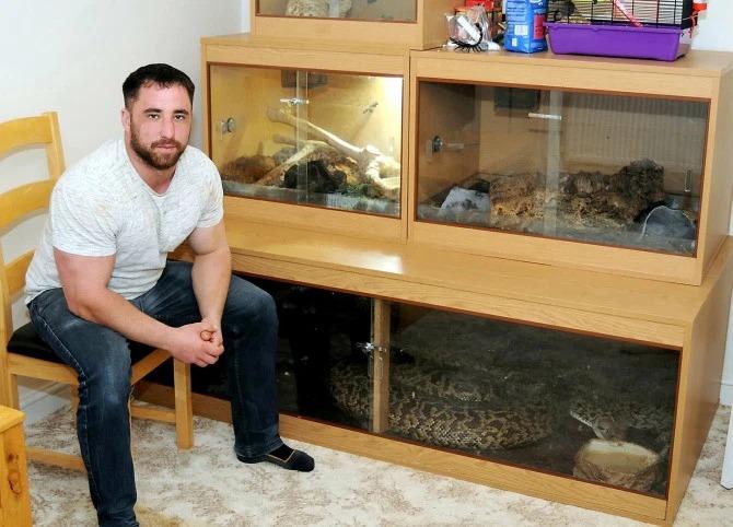 Игры со смертью: у британца дома живет огромный питон, который может проглотить оленя за несколько минут зверушки,живность,питомцы,Животные