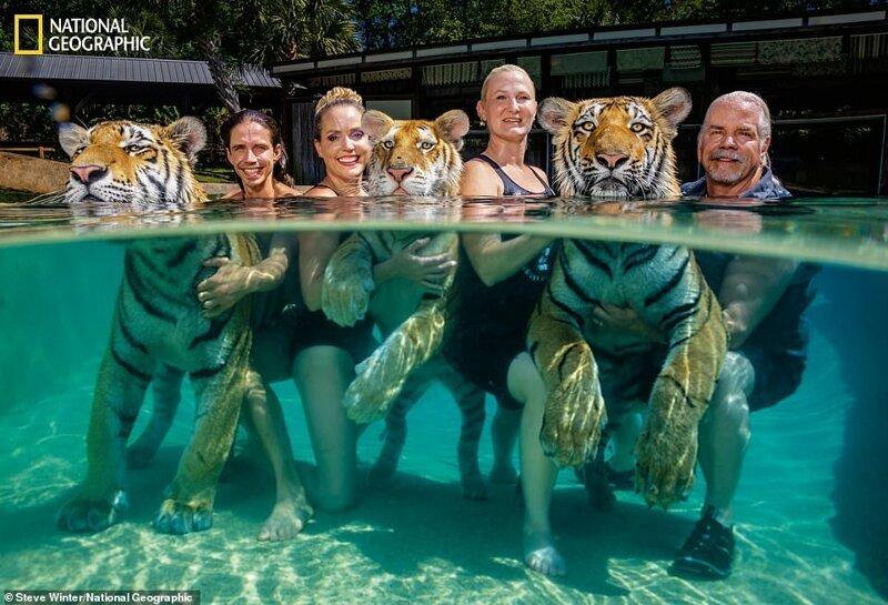 Бхагаван Энтл (крайний справа) и его помощники (слева направо: Коди Антл, Мокша Байби и Чайна Йорк) в шоу тигров, Южная Каролина