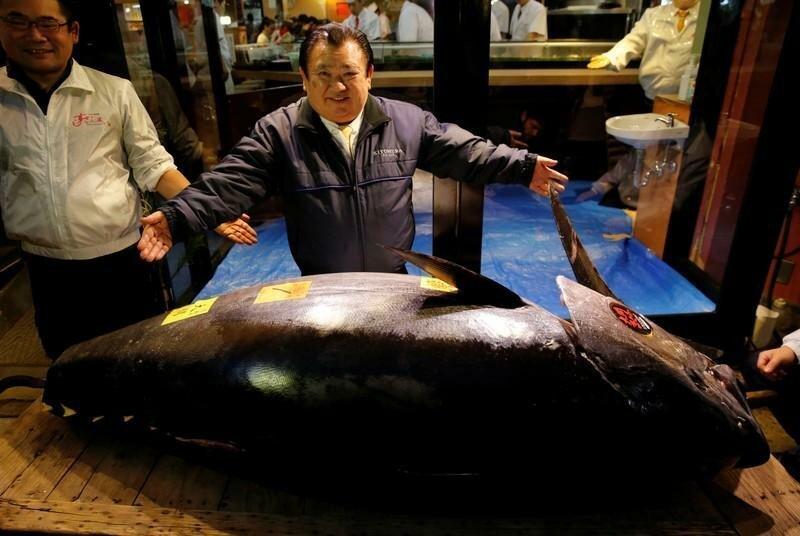 Редкий голубой тунец ушел с торгов за 3,1 миллиона долларов