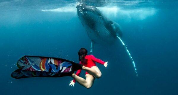 Потрясающие кадры: фридайвер плавает с морскими великанами