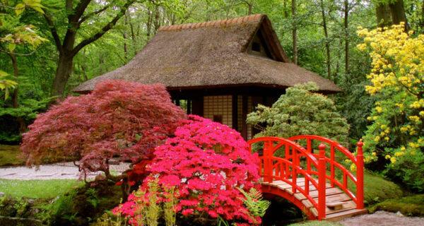 20 японских садов со всегосвета