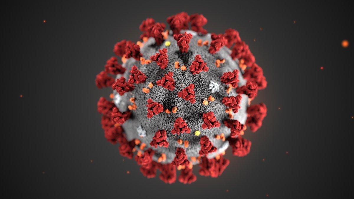 5 самых безумных теорий появления коронавируса фото