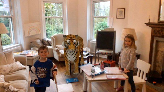 Любимые животные в формате 3D: Google дает возможность увидеть проекцию зверей в доме фото