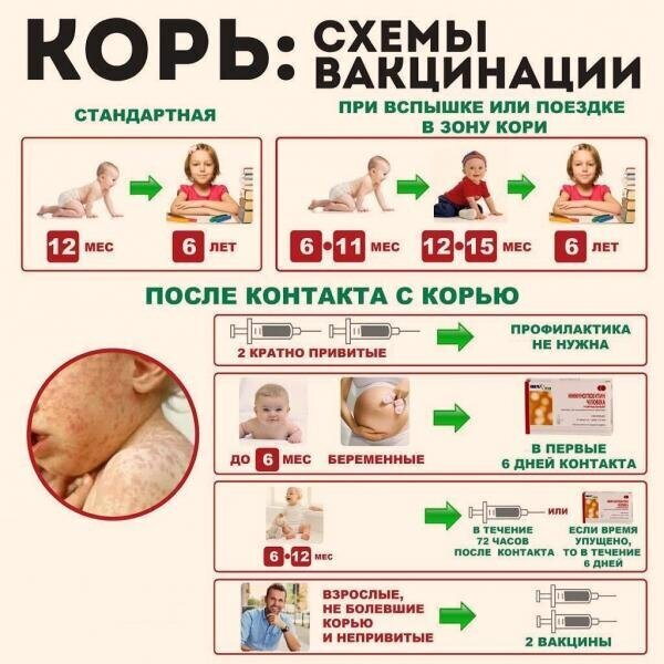 Календарь прививок для 1993 года