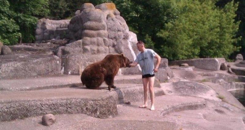 В варшавском зоопарке пьяный мужчина пытался утопить медведя фото