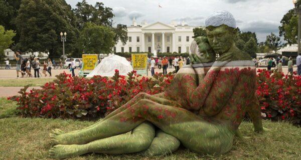 В единении с природой: художница вписывает людей в живописные пейзажи с помощью боди-арта