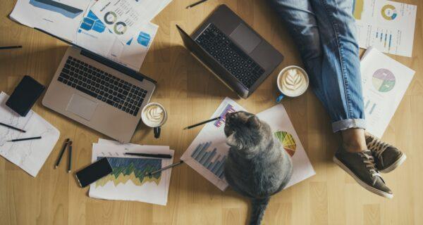 10 товаров с AliExpress, которые нужны каждому, кто работает удаленно