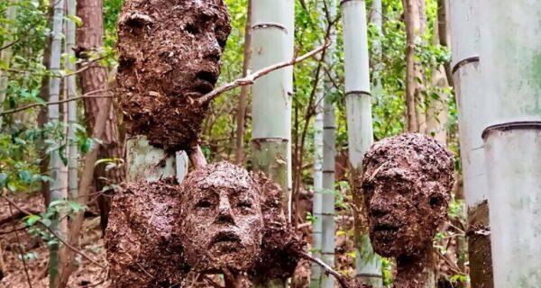 Студент из Японии создал жутковатый, но красивый Лес Отчаяния