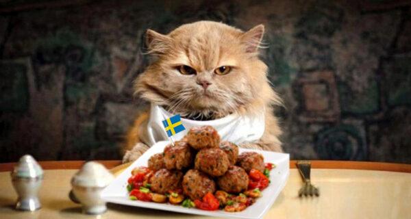 IKEA накормит россиян экодельками — фрикадельками безмяса