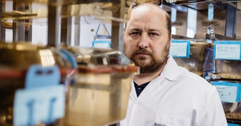 5 фактов ороссийской вакцине откоронавируса отеесоздателя Дениса Логунова