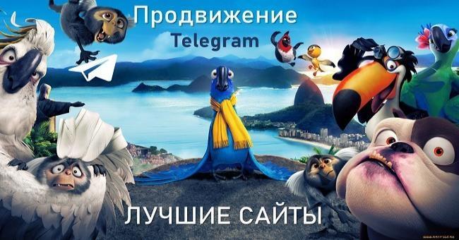 продвижение канала в телеграм