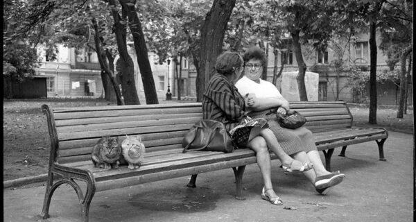 Миша Педан и лучшие снимки из его фотоальбома «Конец прекрасной эпохи»