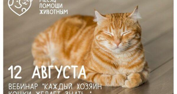 """Бесплатный вебинар """"Каждый хозяин кошки желает знать…"""""""