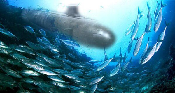 Шведские военные 15 лет принимали пукающих селедок за советские субмарины