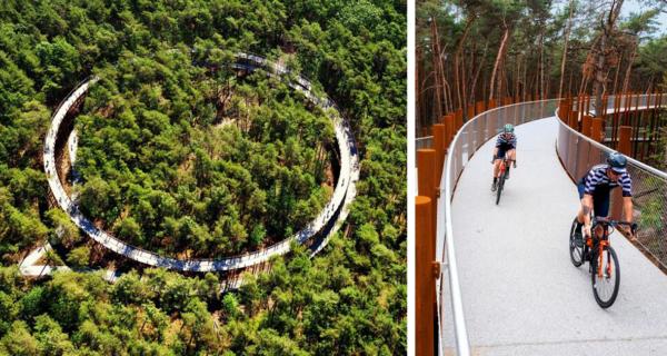Велодорожка в Бельгии позволяет прокатиться по лесу на высоте 10 метров над землей