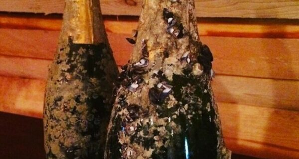 10 самых дорогих бутылок шампанского на сегодняшний день