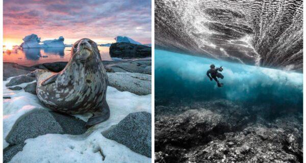Красота и мощь океана на фотографиях победителей конкурса Ocean Photography Awards 2020