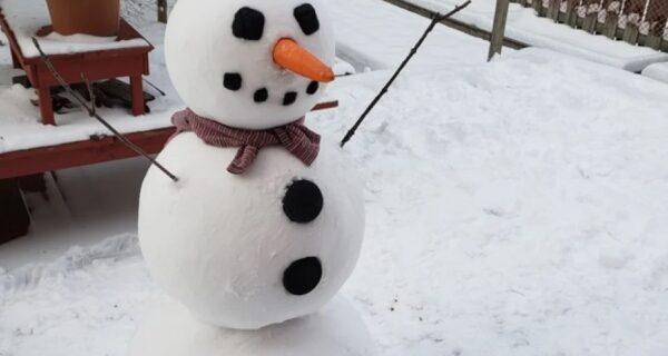 Как выглядит идеальный снеговик
